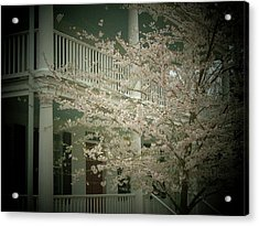 Blossoms And House Acrylic Print