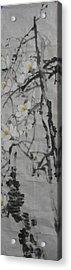 Blossoms Acrylic Print by Min Wang