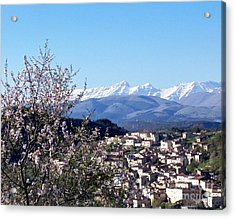 Blossoms With A View Acrylic Print by Judy Kirouac
