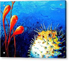 Blow Fish Acrylic Print