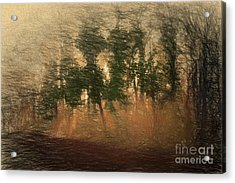 Blowin' In The Wind Acrylic Print by Elaine Teague