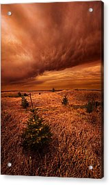 Blowing By Acrylic Print by Phil Koch