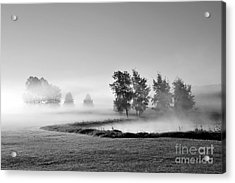 Acrylic Print featuring the photograph Blown Away by Terri Gostola
