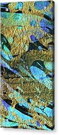 Blue Abstract Art - Deeper Visions 2 - Sharon Cummings Acrylic Print by Sharon Cummings