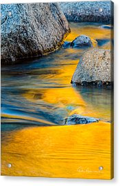 Blue And Gold 0557 Acrylic Print by Dan Beauvais