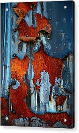 Acrylic Print featuring the photograph Blue And Rust by Karol Livote