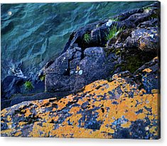 Acrylic Print featuring the photograph Blue Beach by Whitney Leigh Carlson
