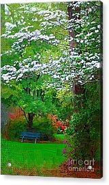Acrylic Print featuring the photograph Blue Bench In Park by Donna Bentley