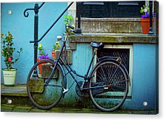 Blue Bike Acrylic Print by Jill Smith