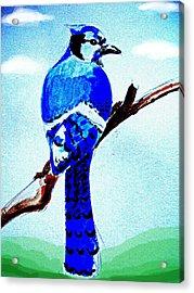 Blue Bird Acrylic Print by Alfredo Lozano