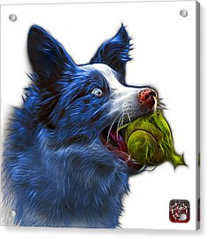 Acrylic Print featuring the painting Blue Border Collie - Elska -  9847 - Wb by James Ahn