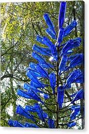 Blue Bottle Tree Acrylic Print by Warren Thompson