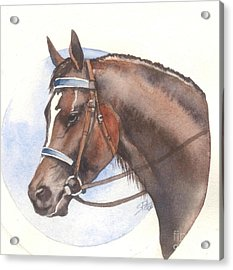 Acrylic Print featuring the painting Blue Bridle by Sandra Phryce-Jones