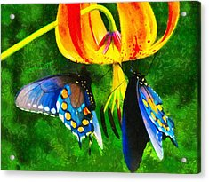 Blue Butterfly In Nature Acrylic Print by Leonardo Digenio