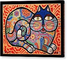 Blue Cat Acrylic Print by Jim Harris