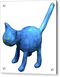 Blue Cat Acrylic Print by Maria Rosa