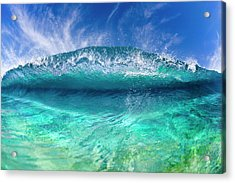 Blue Clam Acrylic Print