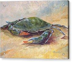 Blue Crab At Rest Acrylic Print by Beth Maddox