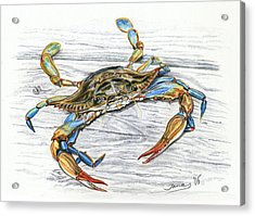 Blue Crab Acrylic Print by Jana Goode