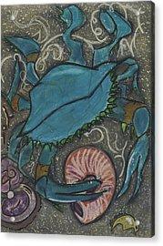 Blue Crab Acrylic Print by Stu Hanson