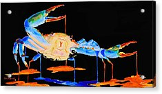 Blue Crab Two Acrylic Print