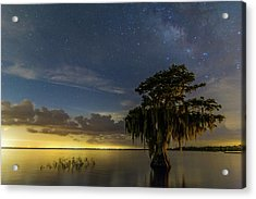 Blue Cypress Lake Nightsky Acrylic Print