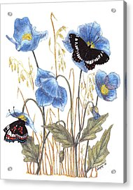 Blue-day Butterfly Acrylic Print