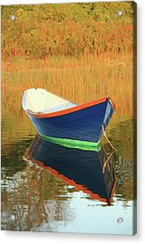 Blue Dory Acrylic Print by Roupen  Baker