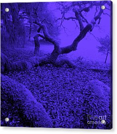 Blue Dreaming Moon Acrylic Print by JoAnn SkyWatcher
