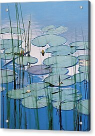 Blue Dreams Acrylic Print