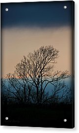 Acrylic Print featuring the photograph Blue Dusk by Chris Berry