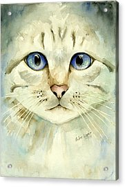Blue-eyed Cat Acrylic Print by Arline Wagner