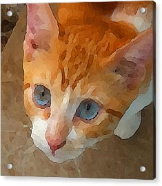 Acrylic Print featuring the digital art Blue Eyed Punk  by Shelli Fitzpatrick