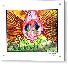 Blue-eyed Triple Fin Acrylic Print by Chris Crowley