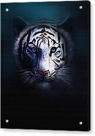 Old Blue Eyes Acrylic Print by Robert Foster