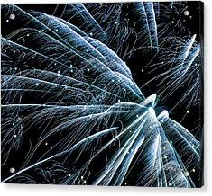 Blue Fairy Fireworks #0710_3 Acrylic Print