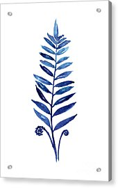 Blue Fern Watercolor Poster Acrylic Print by Joanna Szmerdt