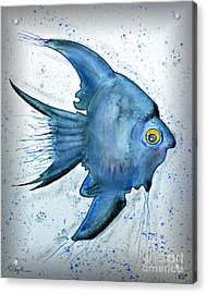 Acrylic Print featuring the photograph Blue Fish by Walt Foegelle