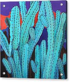 Blue Flame Cactus Acrylic Acrylic Print