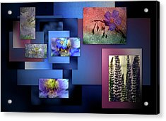 Blue Flower Collage Acrylic Print by Irma BACKELANT GALLERIES