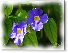 Acrylic Print featuring the painting Blue Flower by Jan Daniels