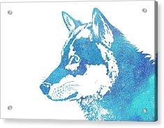 Blue Galaxy Wolf Acrylic Print