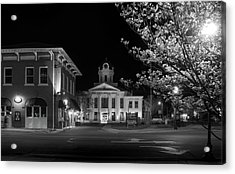 Blue Heritage Dogwood In Black And White Acrylic Print