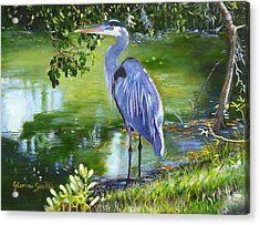 Blue Heron Acrylic Print by Gloria Smith