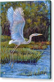 Blue Heron In Flight Acrylic Print by Susan Jenkins
