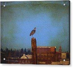 Blue Heron Sky Painted Acrylic Print