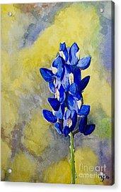 Blue Acrylic Print by Holly York