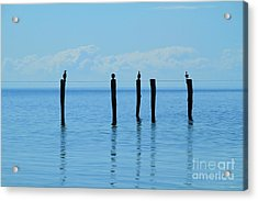 Acrylic Print featuring the photograph Blue Horizon by Stephen Mitchell
