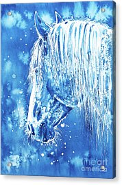 Blue Horse Acrylic Print