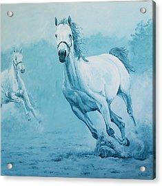 Blue Horses Acrylic Print by Willem Arendsz